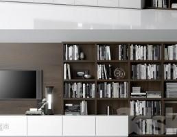 قفسه کتاب + تلویزیون + کمد دیواری