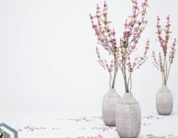 گلدان + گل گلایل