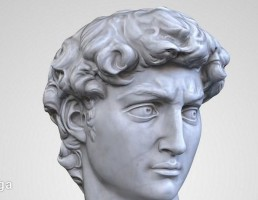 مجسمه مرد David Head