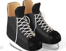 کفش اسکیت روی یخ