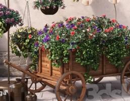 کالسکه پر گل + گلدان آویز