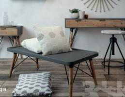 میز + صندلی + کوسن