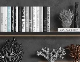 قفسه کتاب + گل + گلدان تزیینی