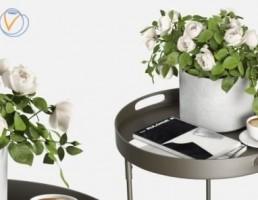 گلدان + گل رز + قهوه