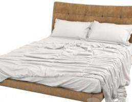 تختخواب G-Spot