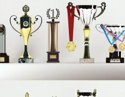 جام و مدال قهرمانی