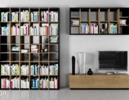 قفسه کتاب + تلویزیون + میز تلویزیون