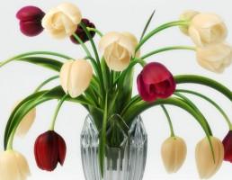 گلدان + گل لاله