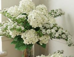 گلدان + گل طبیعی