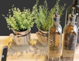 بطری روغن زیتون + گلدان رزماری