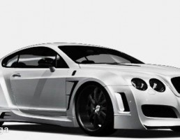 بنتلی مدل Continental GT Platinum Motorsports  سال 2011