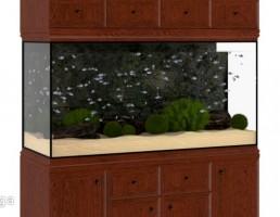 آکواریوم گیاهی + ماهی