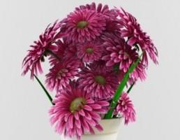 گلدان + گل آفتابگردان