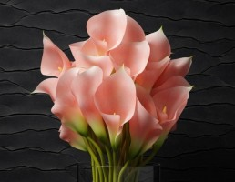 گلدان + گل صورتی