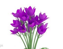 گل لاله