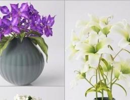 گلدان + گل رنبق + ارکیده + لیلیوم