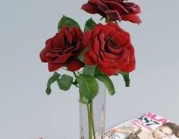 گلدان + گل رز + مجله