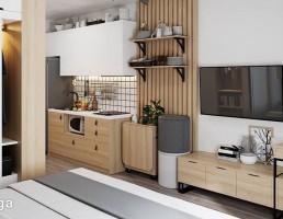 آپارتمان کوچک اسکاندیناوی