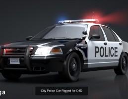 ماشین پلیس شهری