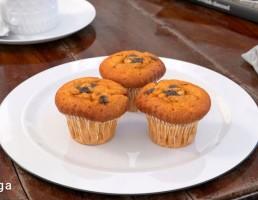 بشقاب + کیک