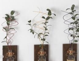 گلدان دیواری + گیاهان خانگی