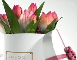 جعبه گل لاله کلاسیک