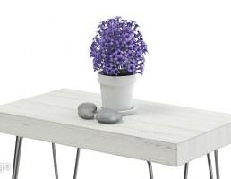 میز عسلی + گلدان + گل طبیعی