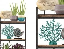 شلف چوبی + گلدان + کاکتوس
