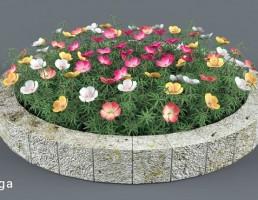 گلدان گل تزیینی باغ