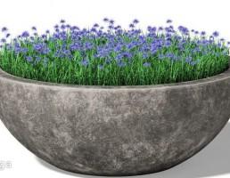 گلدان بتونی باغ