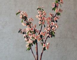 گلدان + بوته گل یاس