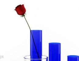 گلدان تزیینی کریستالی + گل رز
