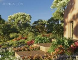 صحنه ایی از درختچه های باغی