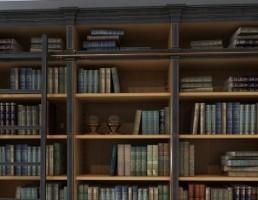 آبجکت کتابخانه کلاسیک AM
