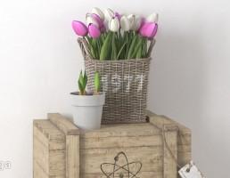 گل لاله + جعبه چوبی