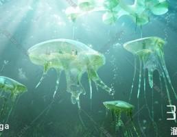 مدل سه بعدی موجودات دریایی