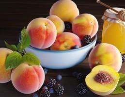 کاسه میوه + عسل