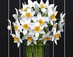 گلدان + گل نرکس