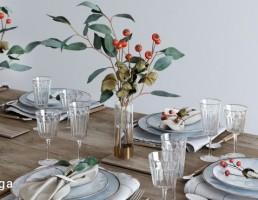 میز غذا خوری + ظروف غذا