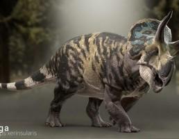 دایناسور xerinsularis