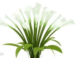گلدان + دسته گل شیپوری