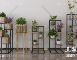 شلف گلدان های آپارتمانی