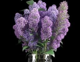 مدل گل و گلدان تزیینی