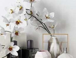 ادکلن + گلدان + گل نرگس