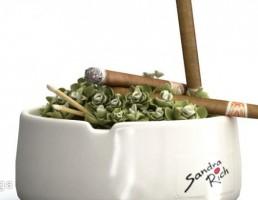 جا سیگاری چینی
