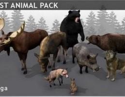 مجموعه حیوانات جنگلی