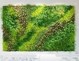 قاب گل دیواری برای سالن