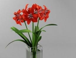 گلدان + گل لیلیوم
