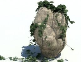 سنگ + گیاه