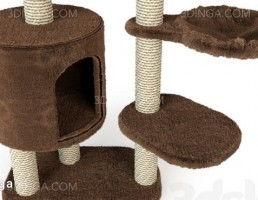 خانه ایی برای گربه بازیگوش